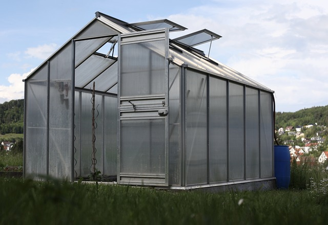 Greenhouse Country Life Vegetables Garden Shed